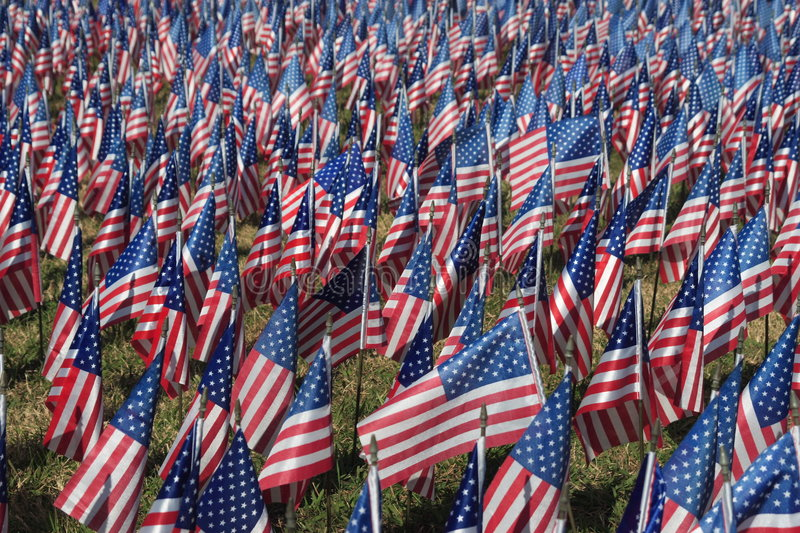 Field of Flags royalty free stock photos