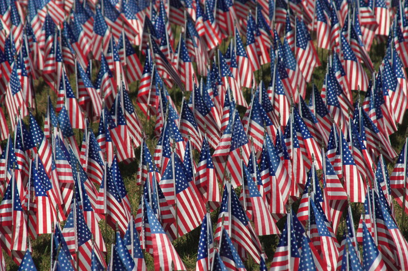 Field of Flags stock images