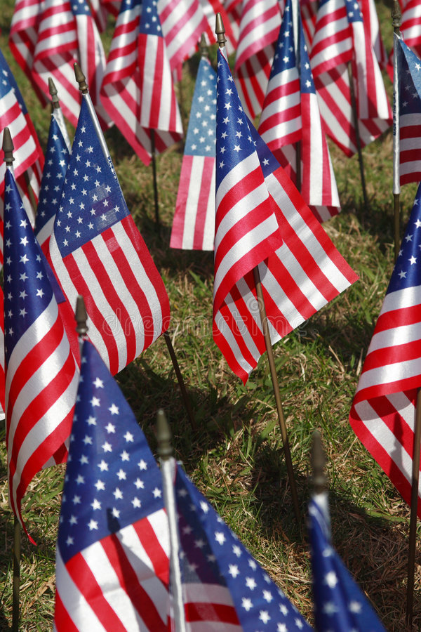 Field of Flags stock image
