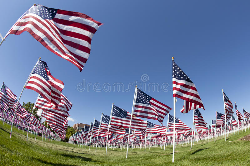 Download Field of Flags stock photo. Image of independence, flags - 21208948