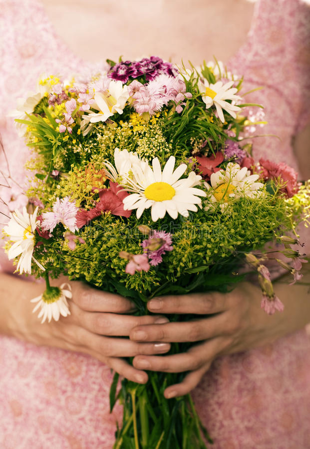 Download Field flowers stock photo. Image of flowers, long, decoration - 24793182