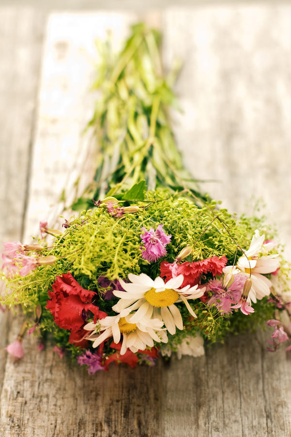 Download Field flowers stock photo. Image of green, table, wooden - 27078680