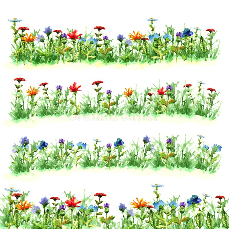 Field flowers in green summer grass on meadow glade variants bright red blue yellow purple objects bloom watercolor paint green fr royalty free stock photos