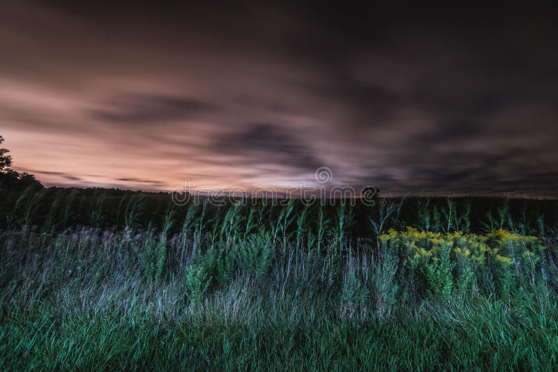 A field flowing in the night stock photography