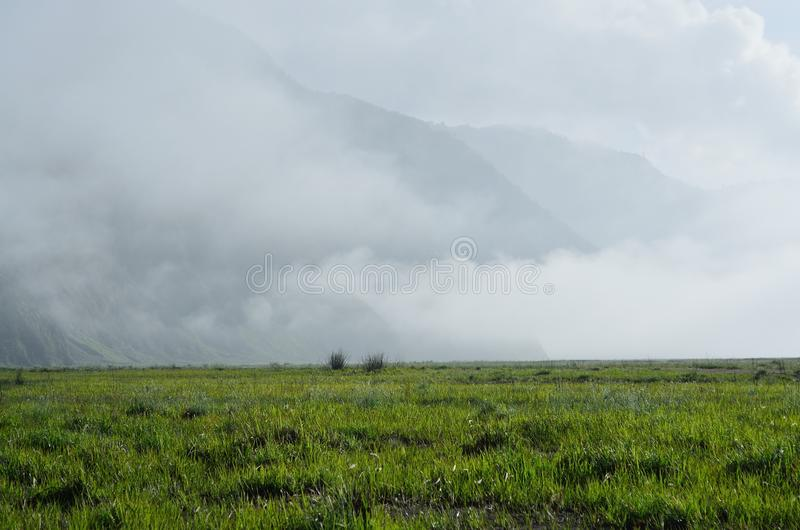 A Field With a Fog royalty free stock photography