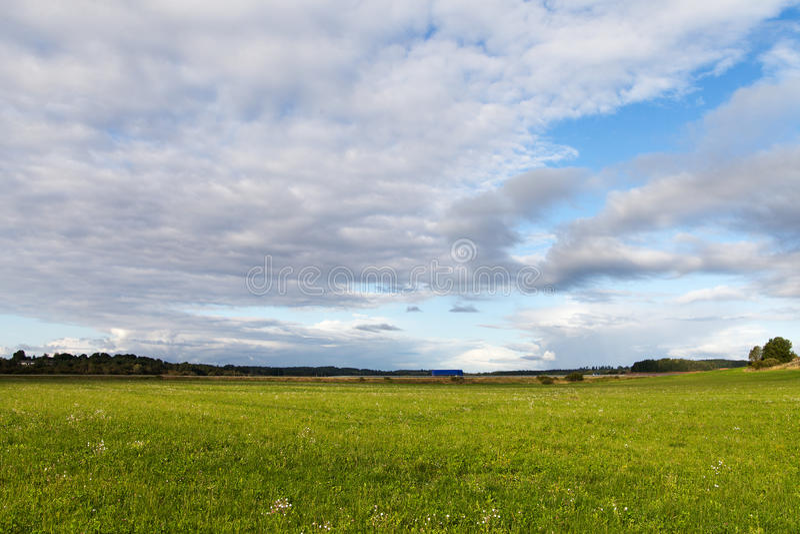 field green royaltyfria foton