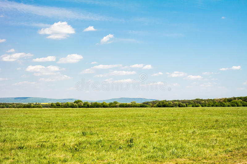 Field of green grass and sky. Background with cloudy sky and grass stock image