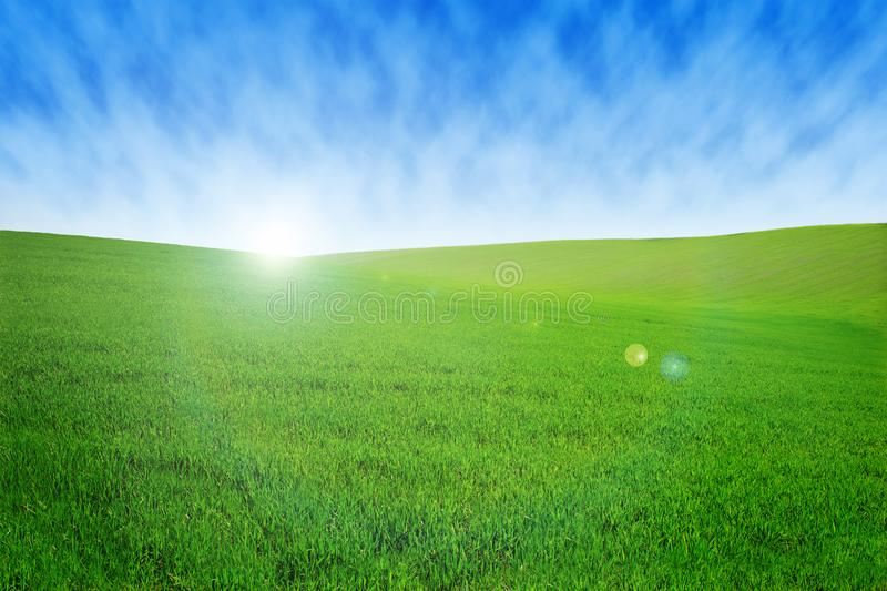 Field with green grass and sky with clouds. Clean, idyllic, beautiful summer landscape with sun. royalty free stock photography