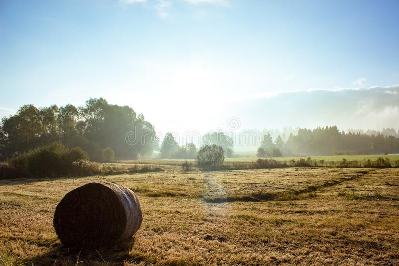 Field, Hay, Morning, Sky royalty free stock photo
