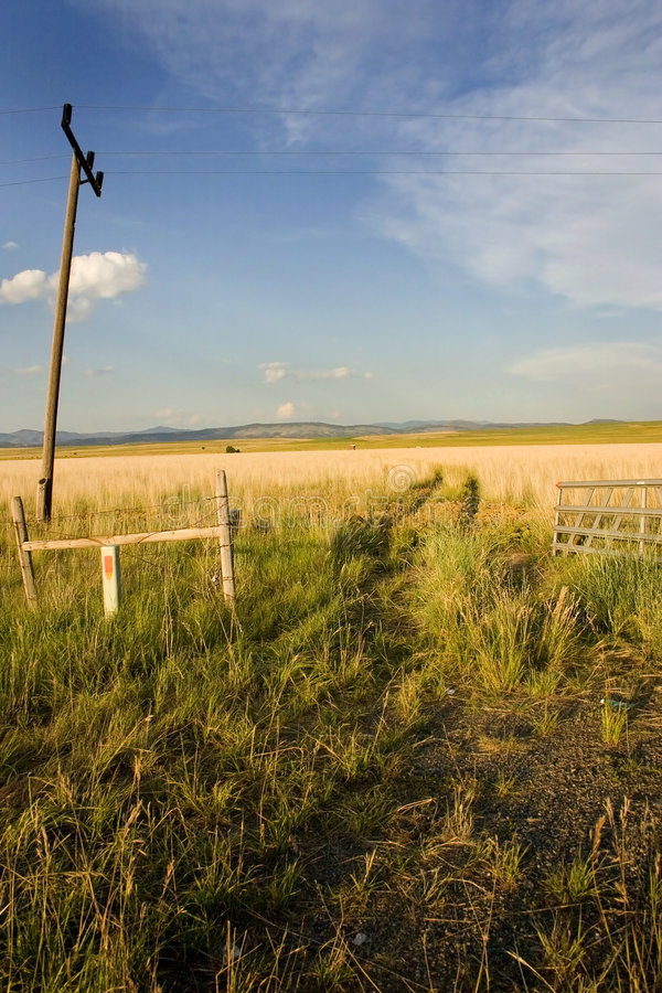 Download Field In Helena Stock Image - Image: 1433061