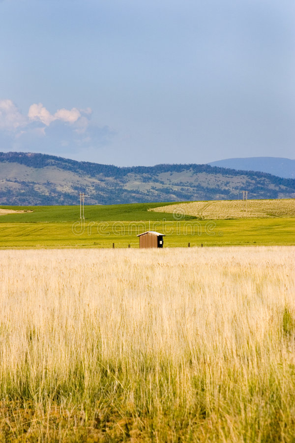 Free Field In Helena With A Shed And Mountains On The Background Stock Photography - 953752