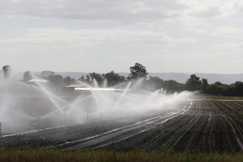 Field irrigation. Sprinkler irrigation system watering cultivated farm land. Australian countryside royalty free stock photography