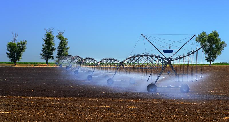 Field irrigation system for better plant growth and further cultivation and growing of agricultural crops royalty free stock photography