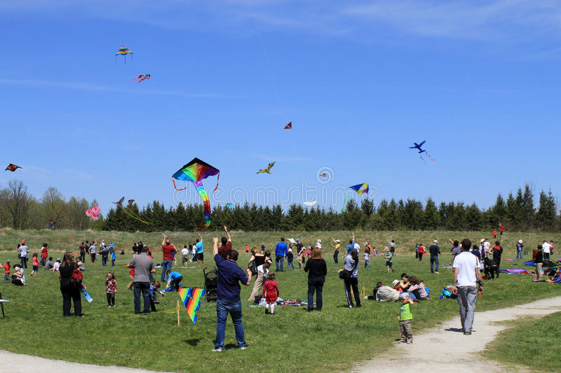 The Field of Kite Festival royalty free stock photo