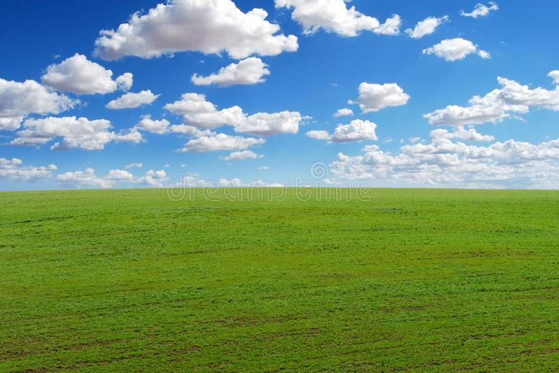 Field meadow cloud sky background. Field meadow cloud sky clean background stock photos