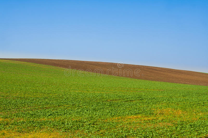Download Field minimal stock photo. Image of country, contemporary - 28530904