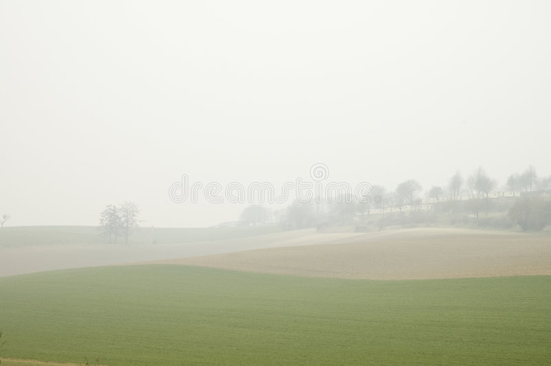 Field in mist royalty free stock photography