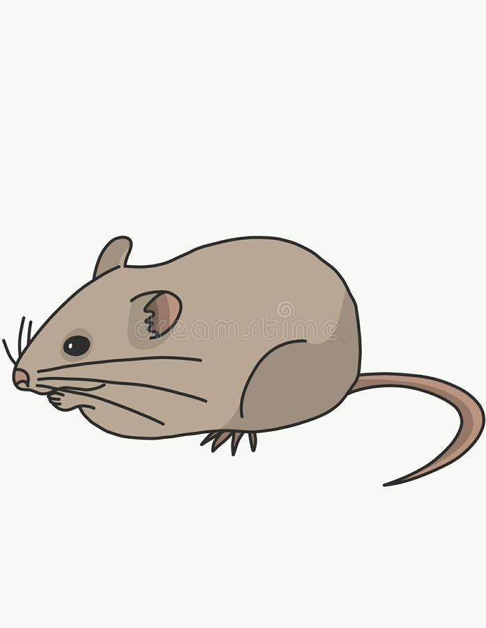 A field mouse eats. This field mouse is still young, and very hungry. So she decided to eat royalty free illustration