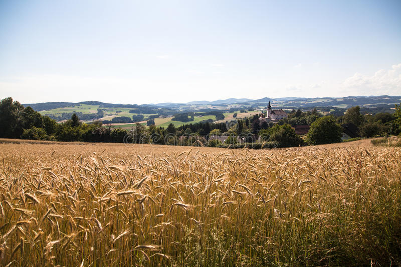 Field - Muehlviertel, Austria. A corn field close to castle Weinberg, Upperaustria royalty free stock photos