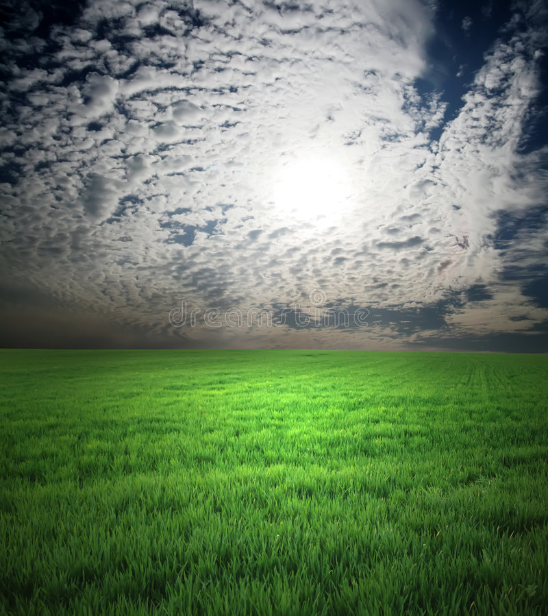 Free Field Of Green Grass And Stormy Sky Royalty Free Stock Photos - 9334768