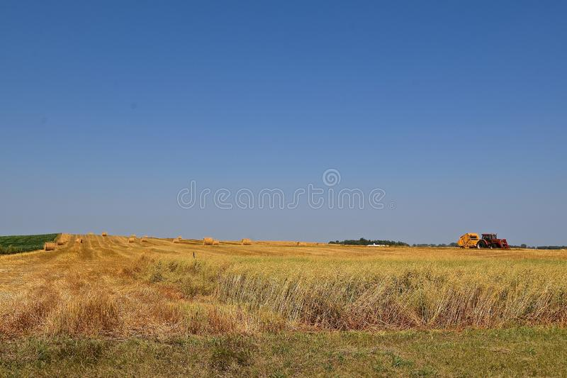 Field of partially harvest and baled oats. Lodged, oats, green oats, harvested oats, and baled oats are all displayed in a field stock photography