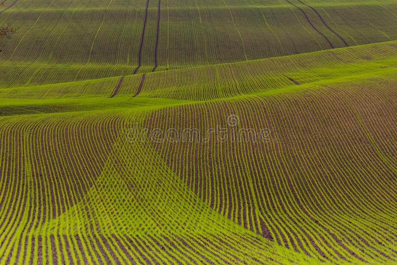 Field passes pattern. Green and brown lines royalty free stock photos