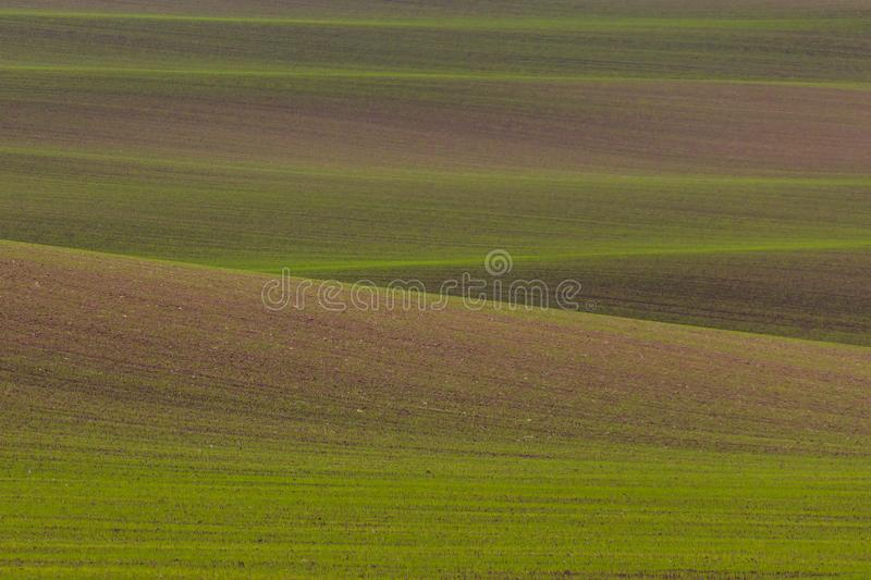 Field pattern. Green and brown hills royalty free stock image