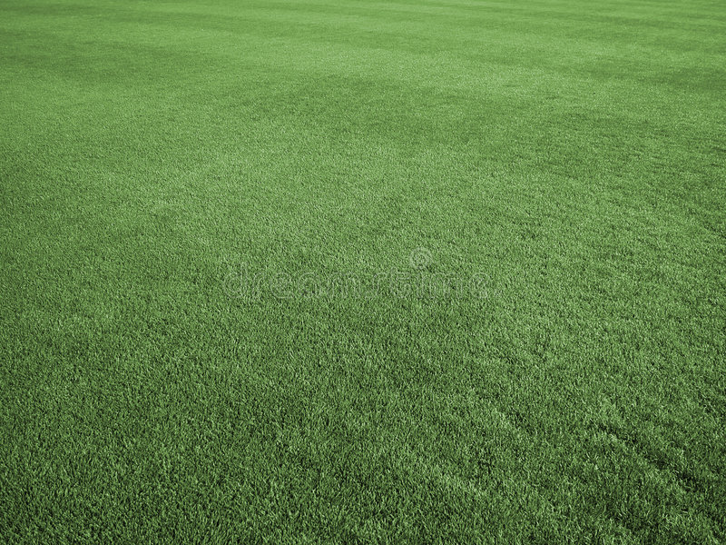 Download Field of Perfect Turf stock image. Image of summer, green - 4748895