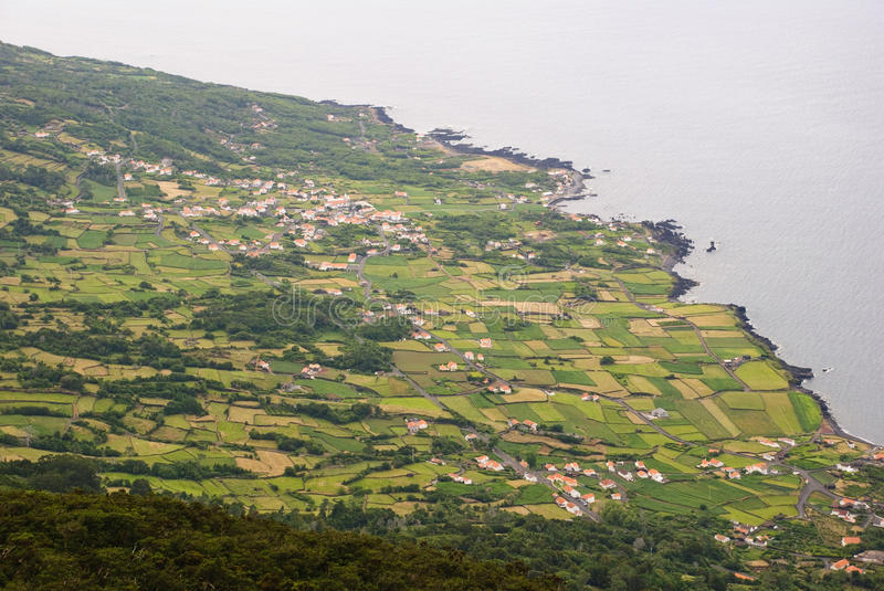 Field, Pico island, Azores. Agricultural fields at the coast of Pico island, Azores stock photos