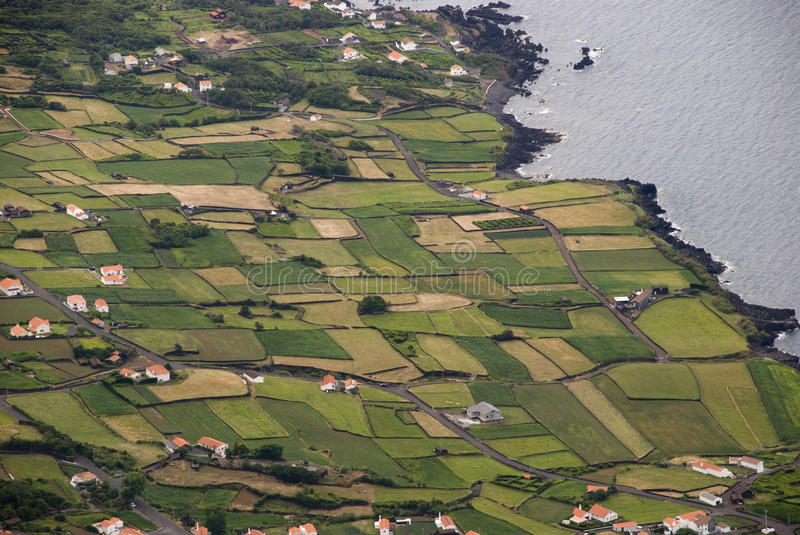 Field, Pico island, Azores. Agricultural fields at the coast of Pico island, Azores stock image
