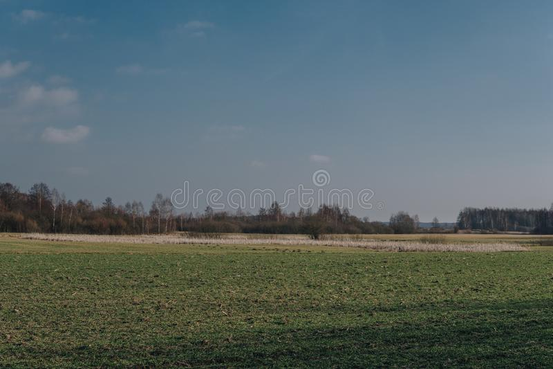 Field on a plain. Landscape with empty field on a plain during end of winter season, spring, early, blue, nature, horizon, grass, terrain, background, sky stock photography