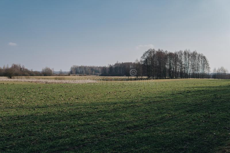 Field on a plain. Landscape with empty field on a plain during end of winter season, spring, early, blue, nature, horizon, grass, terrain, background, sky stock image