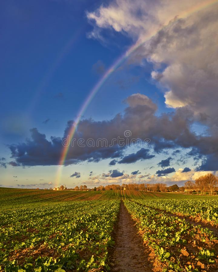 Field with Rainbow and dramatic gray sky with clouds landscape stock photography