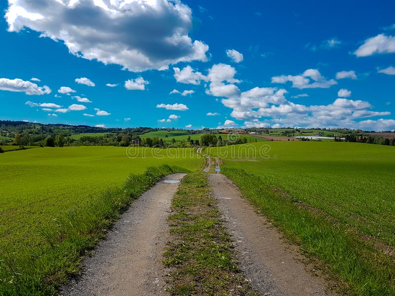 A field and road in the middel. Oppland county norway. blue sky with some clouds on a nice summer day royalty free stock images