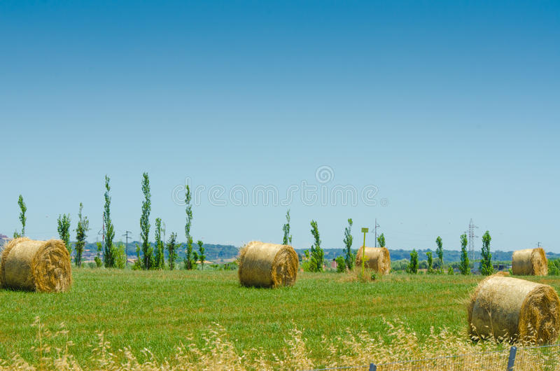 Download Field With Rolls Of Hay Stock Photography - Image: 26631302