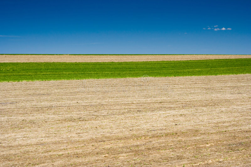 Field In Rural Pennsylvania Royalty Free Stock Photography