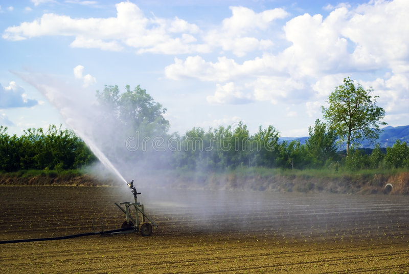 Field's irrigation, Italy stock images
