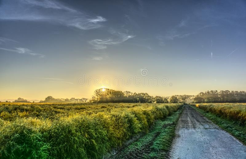 Field, Sky, Grassland, Morning royalty free stock photo