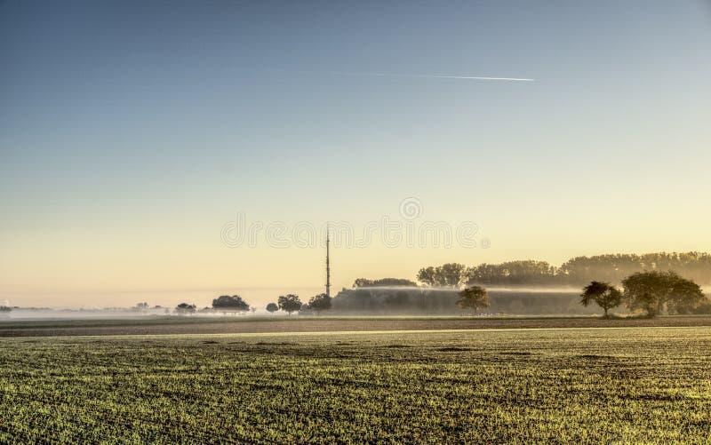 Field, Sky, Morning, Grass Family stock photos