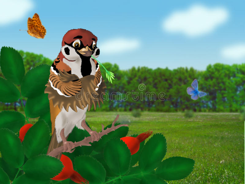 Download Field sparrow stock illustration. Image of image, photo - 34833225