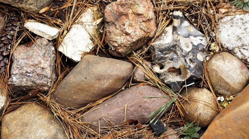 Field stones of various shapes in the group stock photography