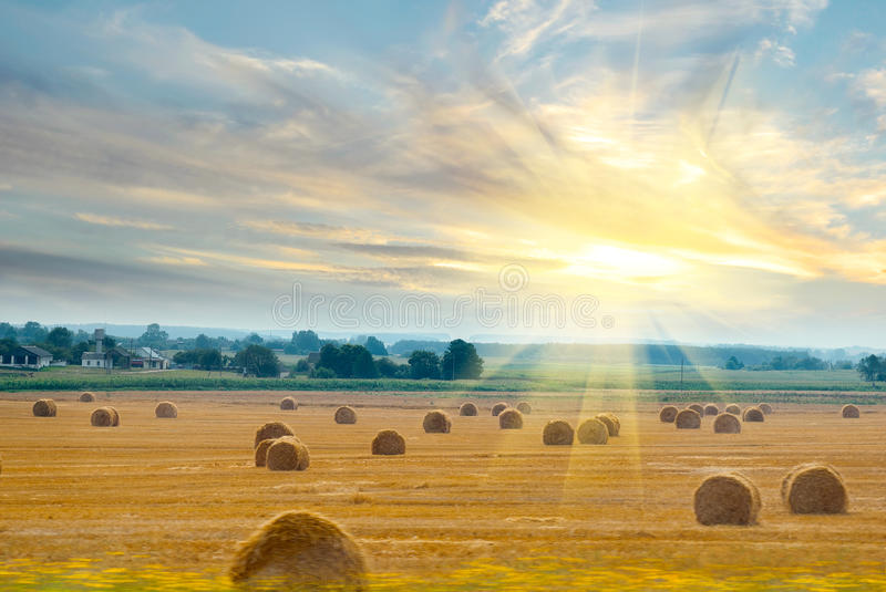 Download Field With Straw For The Train Window Royalty Free Stock Photo - Image: 26590015