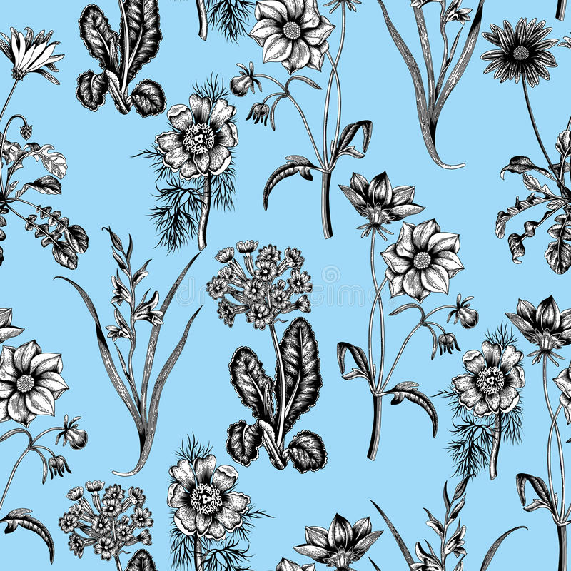 Field summer flowers. Seamless background. Botany. Cloth, wallpaper. Bloom. Texture with floral pattern. stock illustration