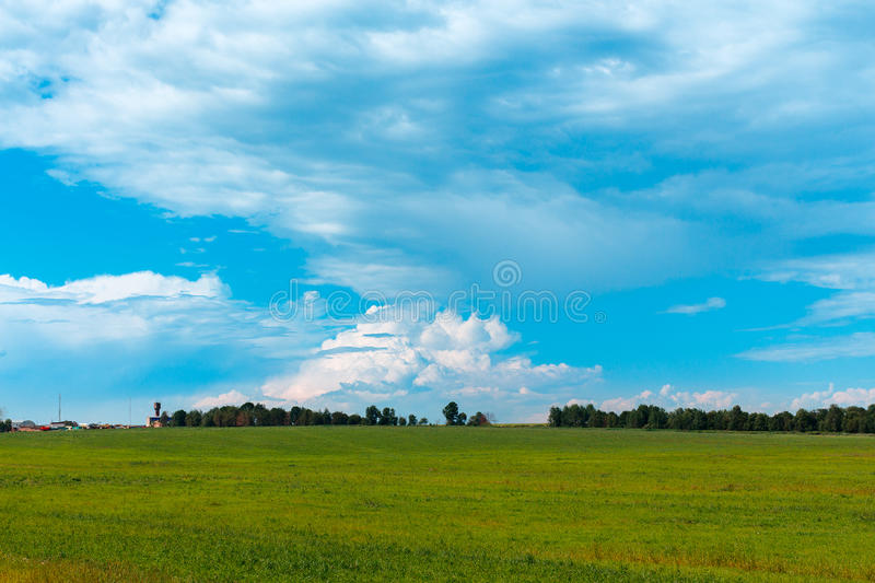 Field of summer grass. Forest on the horizon. Cloudy sky. Russia royalty free stock images