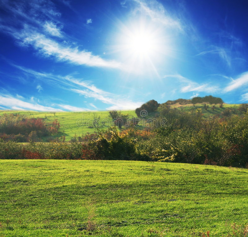 Field and sun royalty free stock image