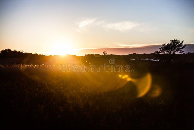 Field During Sunrise Free Public Domain Cc0 Image