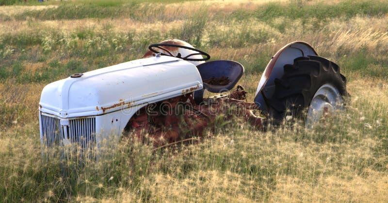 field traktoren royaltyfri fotografi