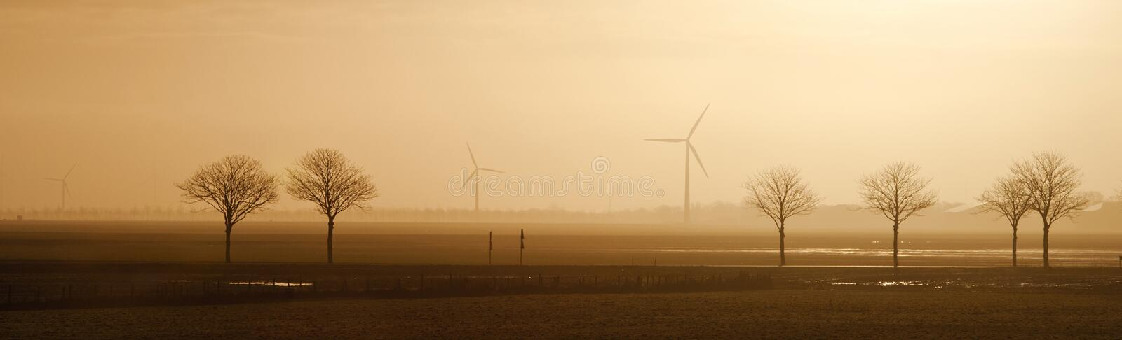 Field with trees and windmills on the horizon in the morning. Typical dutch landscape. North Holland, Hollands Kroon, Netherlands. Panoramic view royalty free stock photos
