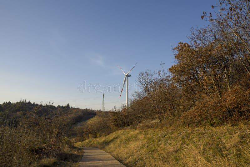 field turbines wind yellow Produktion av rent och förnybara energikällor Trentino Italien arkivbild