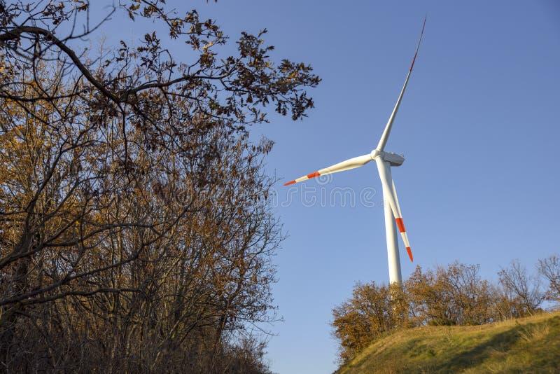 field turbines wind yellow Produktion av rent och förnybara energikällor Trentino Italien royaltyfria foton